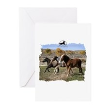 Three Foals Greeting Cards (Pk of 20)