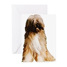 Tibetan Terrier portrait Greeting Cards (Package o