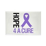 Hodgkin's Hope 4 a Cure Rectangle Magnet (10 pack)