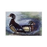 Wood Ducks Rectangle Magnet