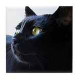 Black Cat in Profile Tile Coaster