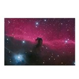 Horsehead Galaxy Postcards (Package of 8)