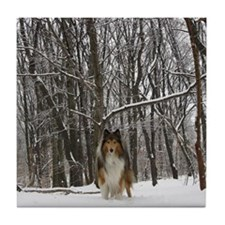 Collie in Winter Tile Coaster