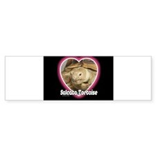 Sulcata Heart Bumper Sticker (10 pk)