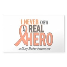 Never Knew A Hero 2 ORANGE (Mother) Decal