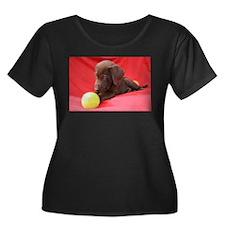Chocolate Puppy #3 T