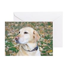 Yellow Lab #2 Portrait Greeting Card