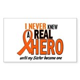 Never Knew A Real Hero 2 ORANGE Decal