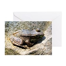Sleepy Frog Greeting Cards (Pk of 10)