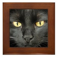 Dangerously Beautiful Black Cat Framed Tile