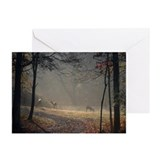 Unique Sunrise Greeting Cards (Pk of 10)