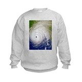 Cute Disaster Sweatshirt