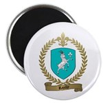 RAZILLY Family Crest Magnet