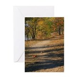 Winding Trail Greeting Card