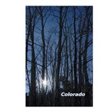 Apen Light Postcards (Package of 8)