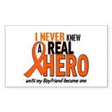 Never Knew A Hero 2 ORANGE (Boyfriend) Decal