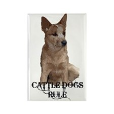 Cattle Dogs Rule Rectangle Magnet (10 pack)