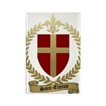 SAINT-ETIENNE Family Crest Rectangle Magnet (10 pa