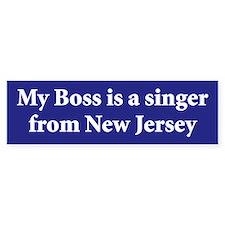 Bruce Springsteen Bumper Bumper Sticker