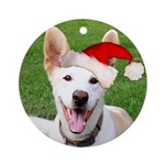 Big Jake Dog Ornament (Round)