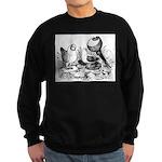 Pigeon Trio Sweatshirt (dark)