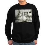 Texan Pioneer Pigeons Sweatshirt (dark)