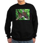Ringneck Doves Sweatshirt (dark)