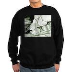 Ice Pigeons Sweatshirt (dark)