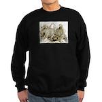 Frillback Pigeons Sweatshirt (dark)