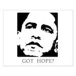 Obama 2008: Got hope? Small Poster