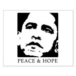 Obama 2008: Peace and Hope Small Poster