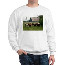 Sierra Cattle Sweatshirt