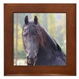 Dakota-Friesian Stallion Framed Tile