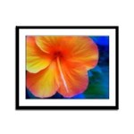 Orange Hibiscus Framed Panel Print