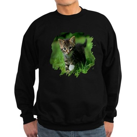 Baby Kitten Sweatshirt (dark)