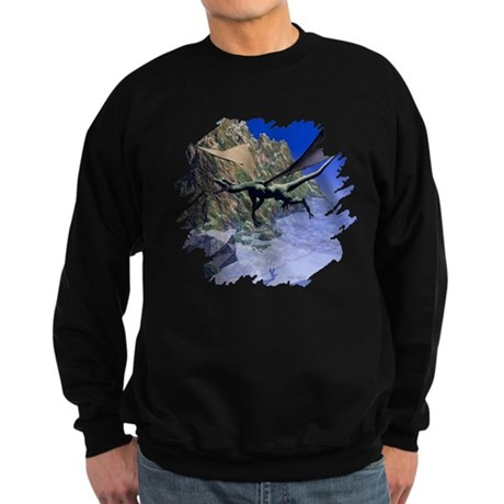 Flying Dragon Sweatshirt (dark)