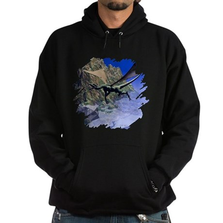 Flying Dragon Hoodie (dark)