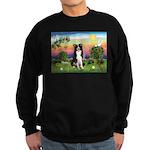Bright Country/Border Collie Sweatshirt (dark)