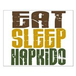 Eat Sleep Hapkido Small Poster