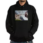 Creation/Labrador (Y) Hoodie (dark)