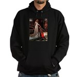 The Accolade & Lhasa Apso Hoodie (dark)