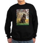 Spring / Newfoundland Sweatshirt (dark)
