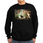 Venus * /PWD Sweatshirt (dark)
