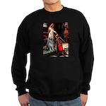 Accolade / G Schnauzer Sweatshirt (dark)