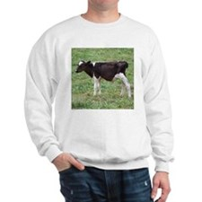 holstein calf Sweatshirt