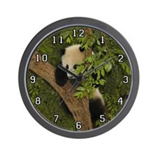 Giant Panda Bear SD 004 Wall Clock