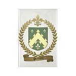POITEVIN Family Crest Rectangle Magnet (10 pack)
