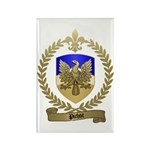 PICHOT Family Crest Rectangle Magnet (10 pack)