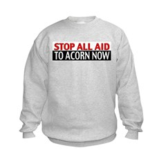Ban Acorn Kids Sweatshirt
