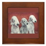 Bedlingtons Three Framed Tile
